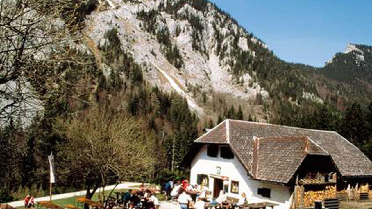 Klettersteig Traunstein : Mair alm steig auf den traunstein