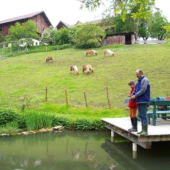 Ferienhof Schmauß