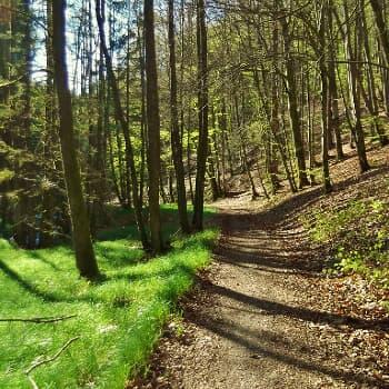 Steinbruchweg Nr. 4