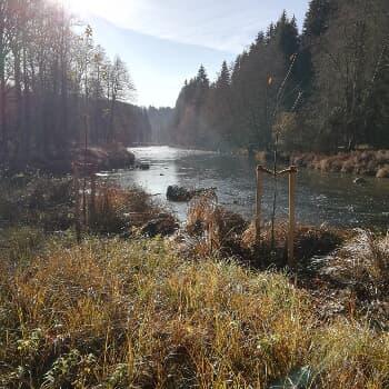 Ilztalrundtour Kalteneck - Schrottenbaummühle - Schneidermühle