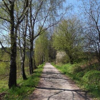 Kirchenholzweg Nr. 3