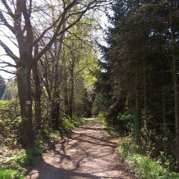 Rohrbergweg Nr. 6