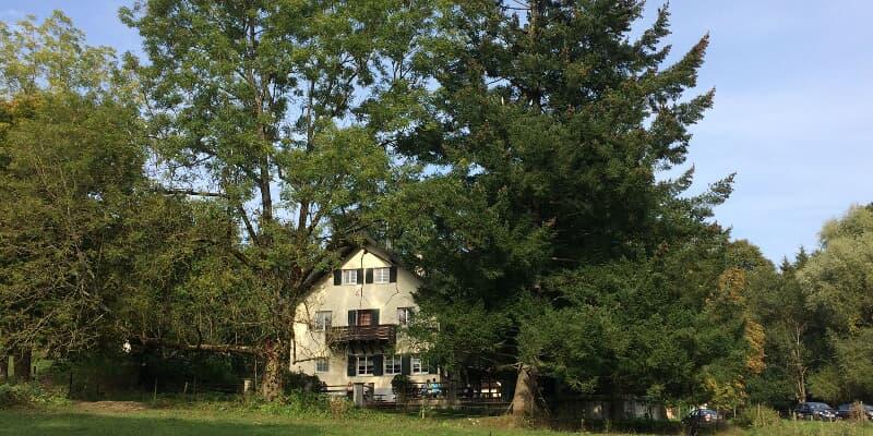 Forsthaus Waldreichenbach