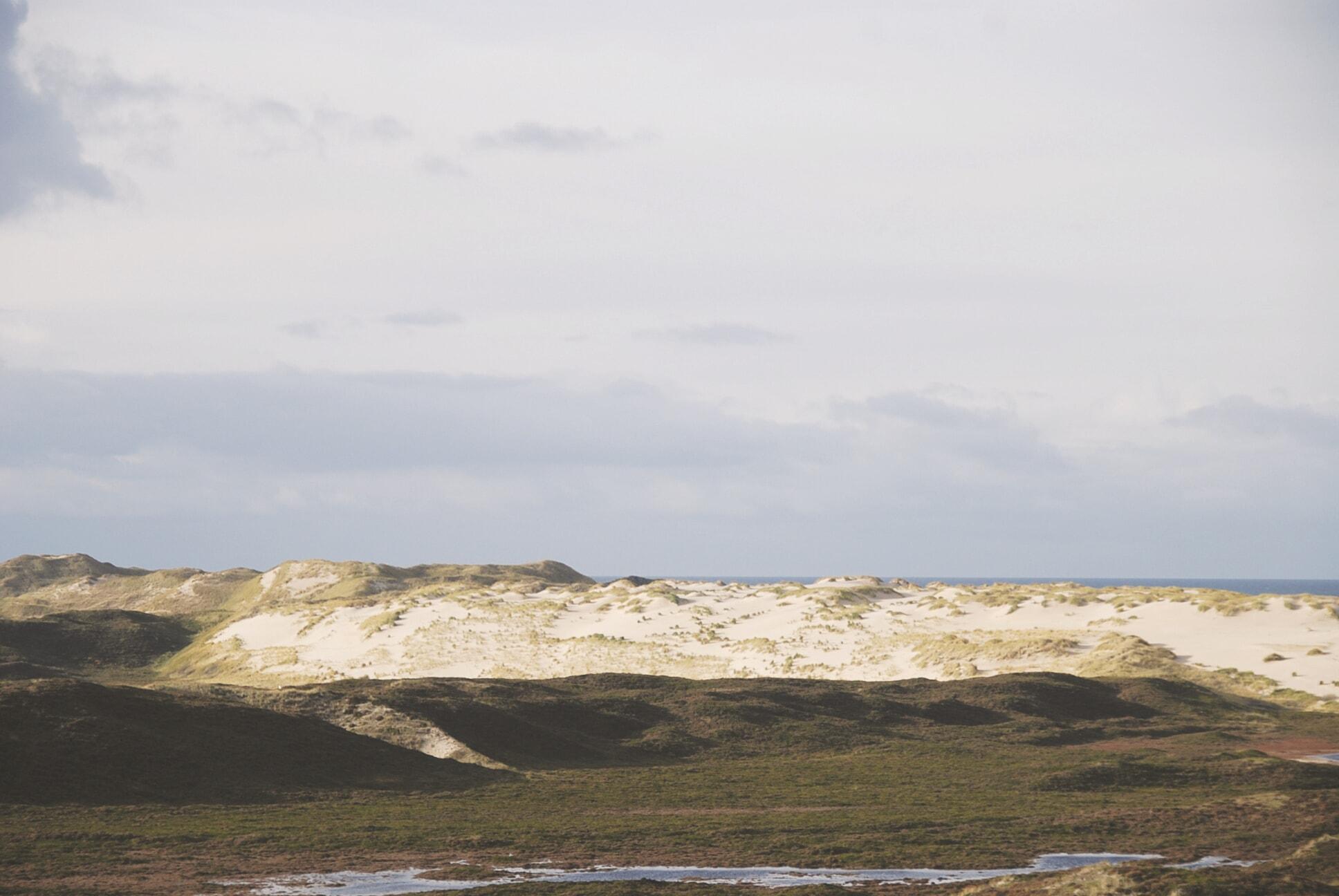 Wanderdünen mit Blick auf das Meer