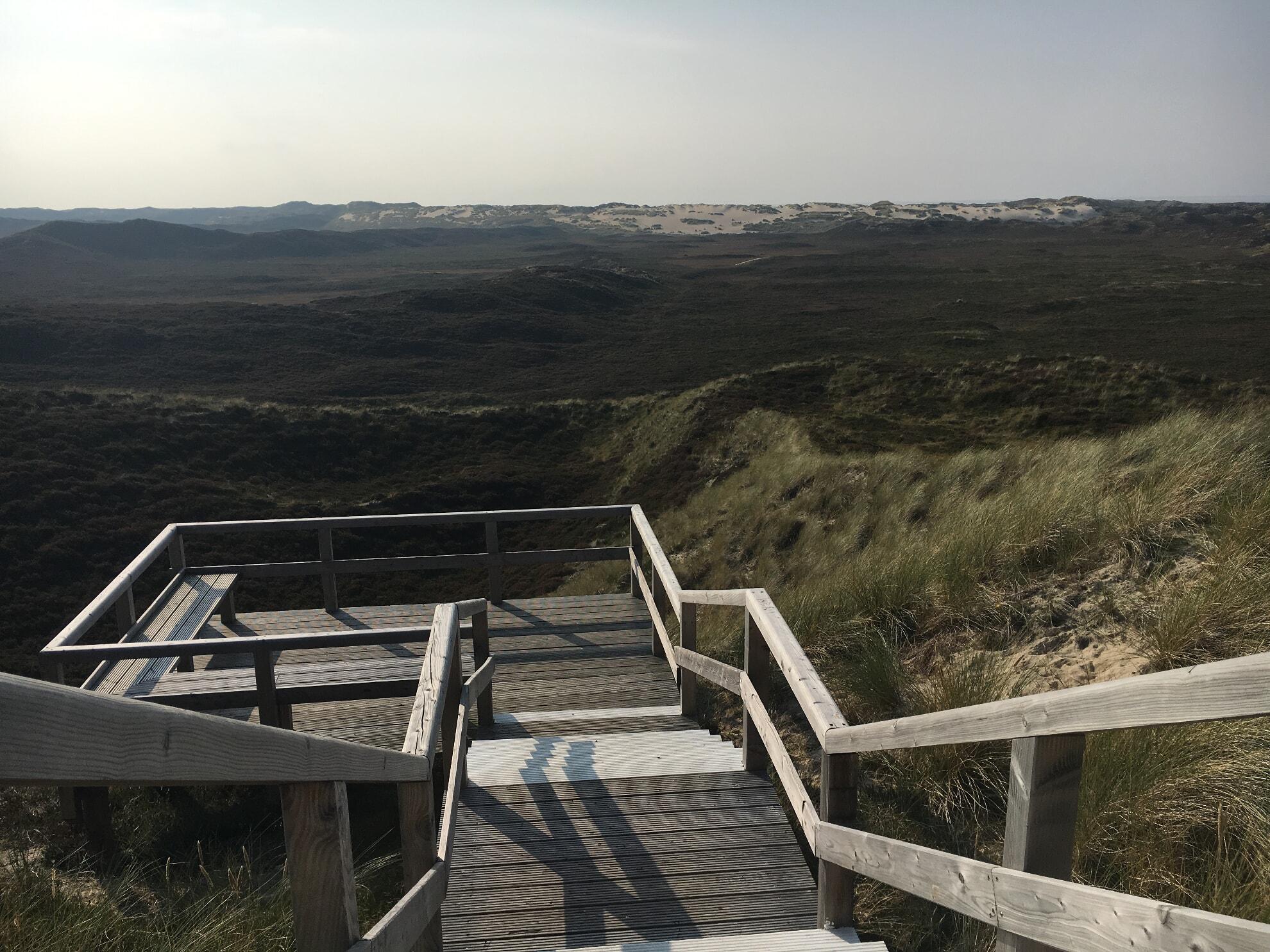 Aussichtsplattform mit Blick auf die Wanderdüne