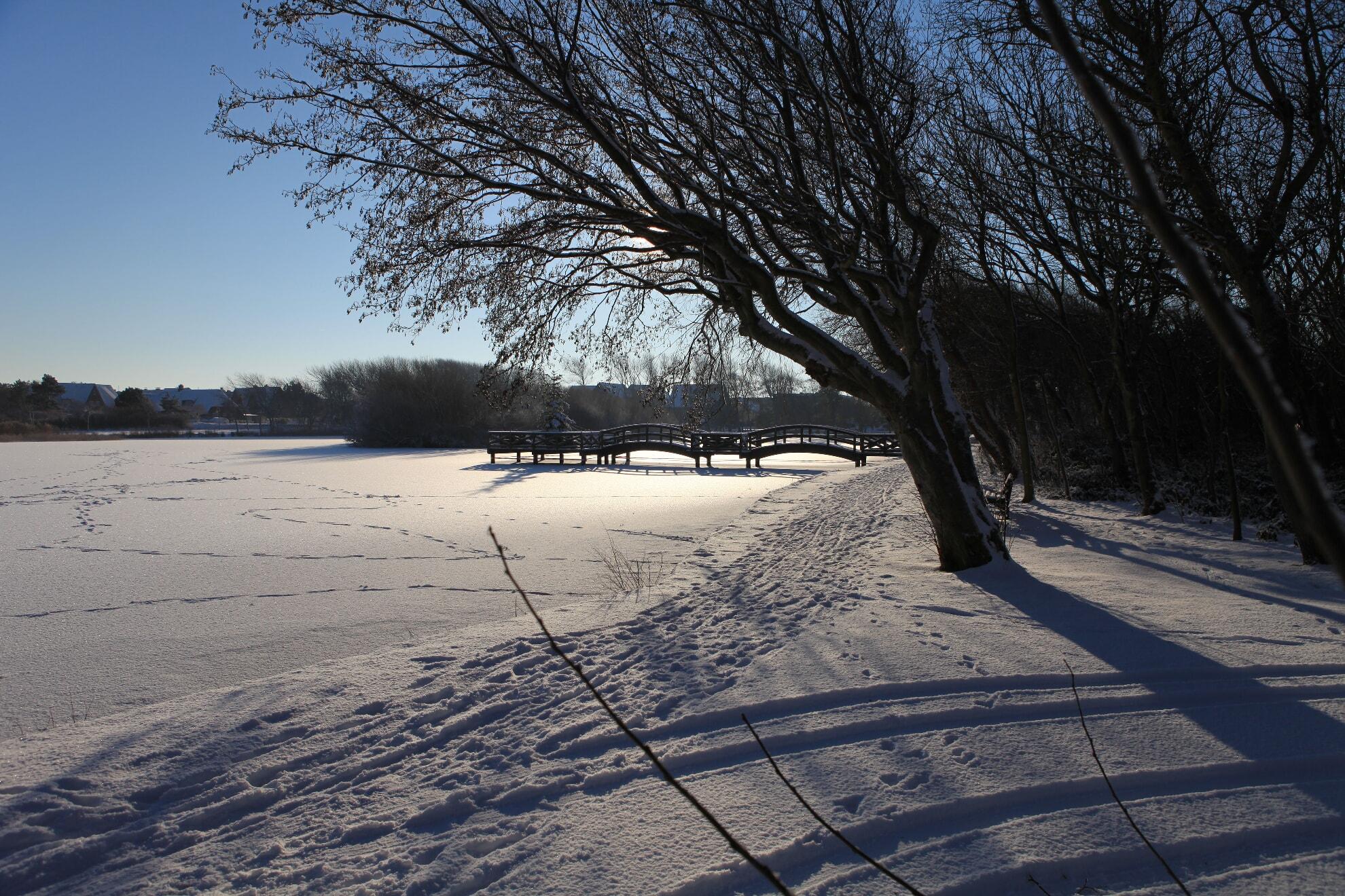 Dorfteich Wenningstedt im Winter