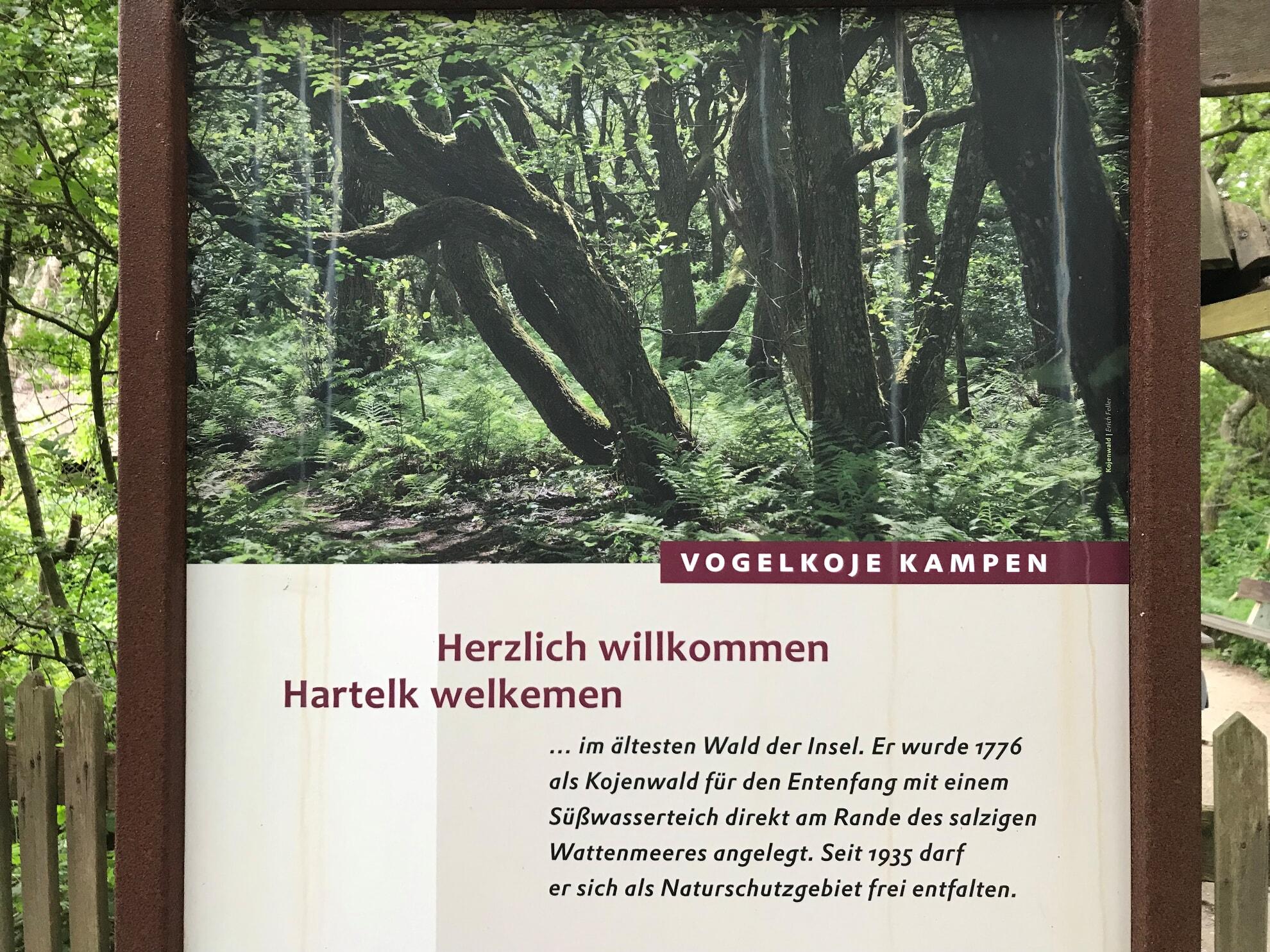 Naturzentrum Vogelkoje Kampen