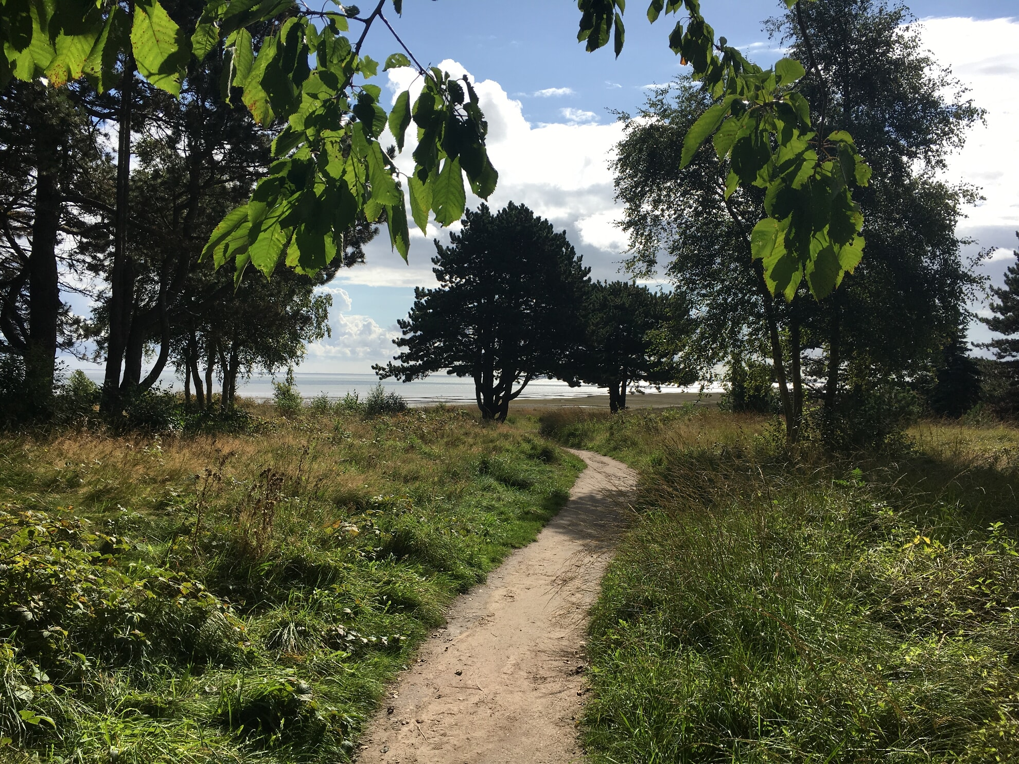 Weg von der Kupferkanne zur Braderuper Heide