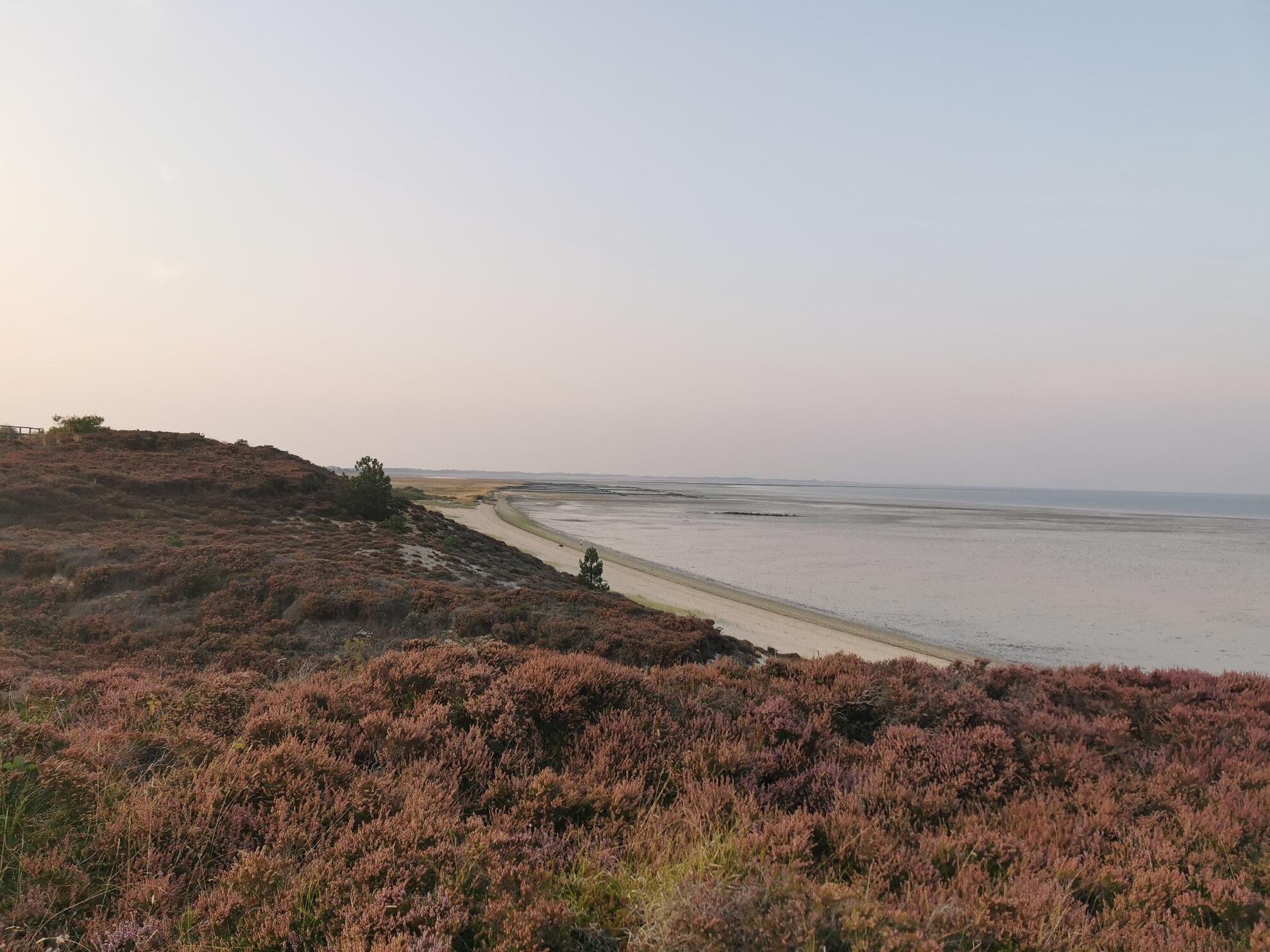 Braderuper Heide - Blick vom weißen Kliff