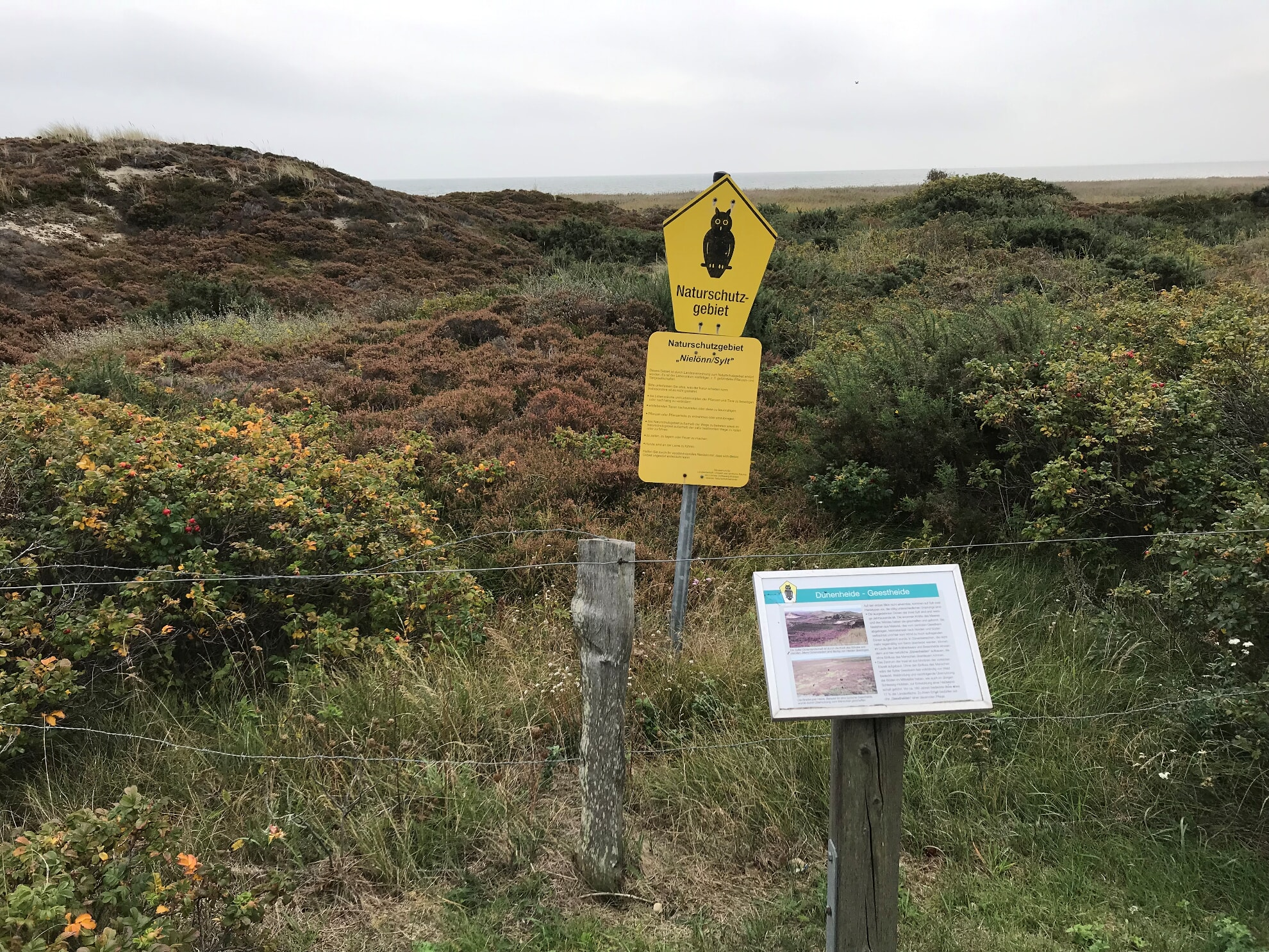 Naturschutzgebiet Nielönn