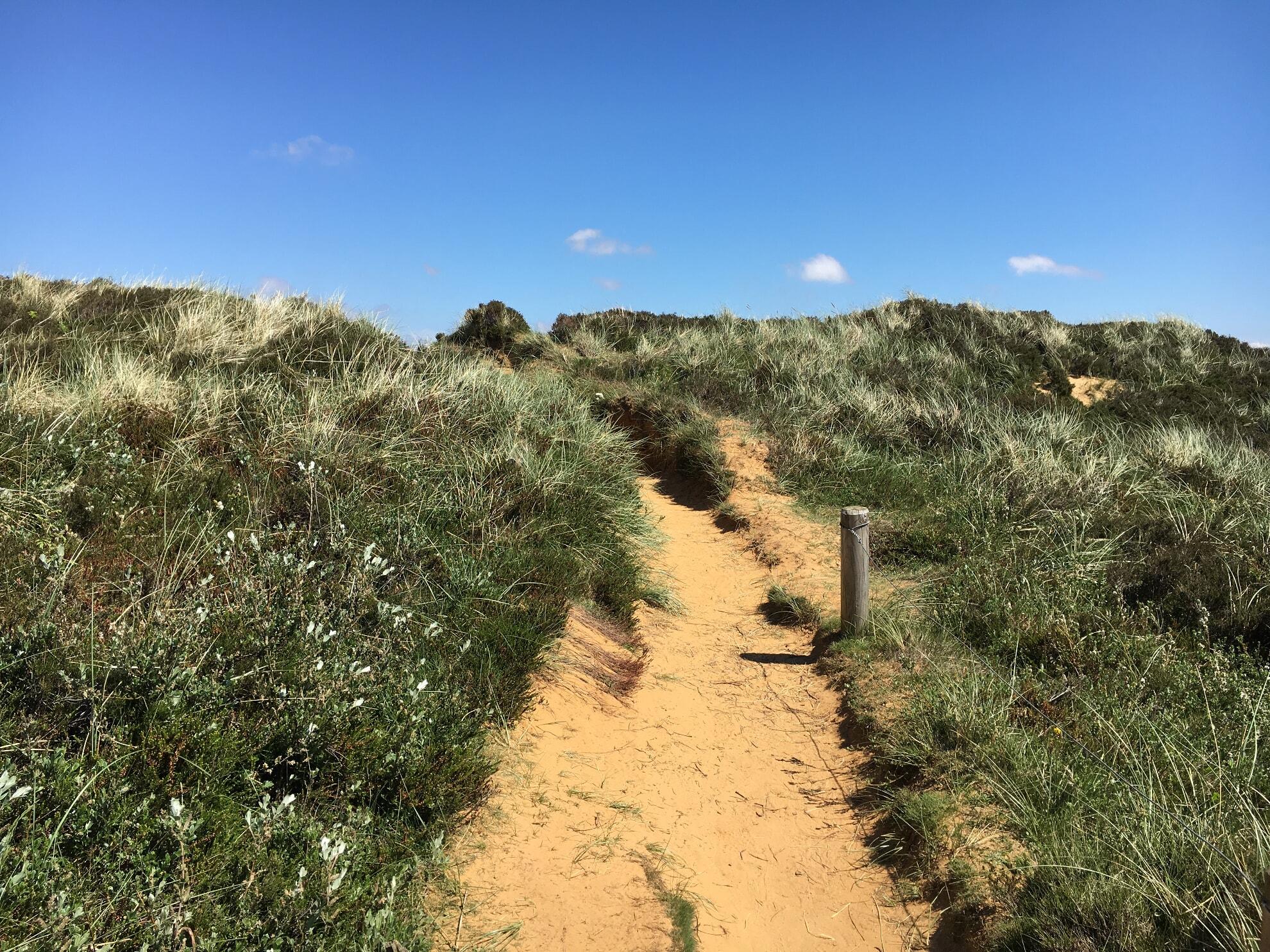Wanderweg am Morsum Kliff