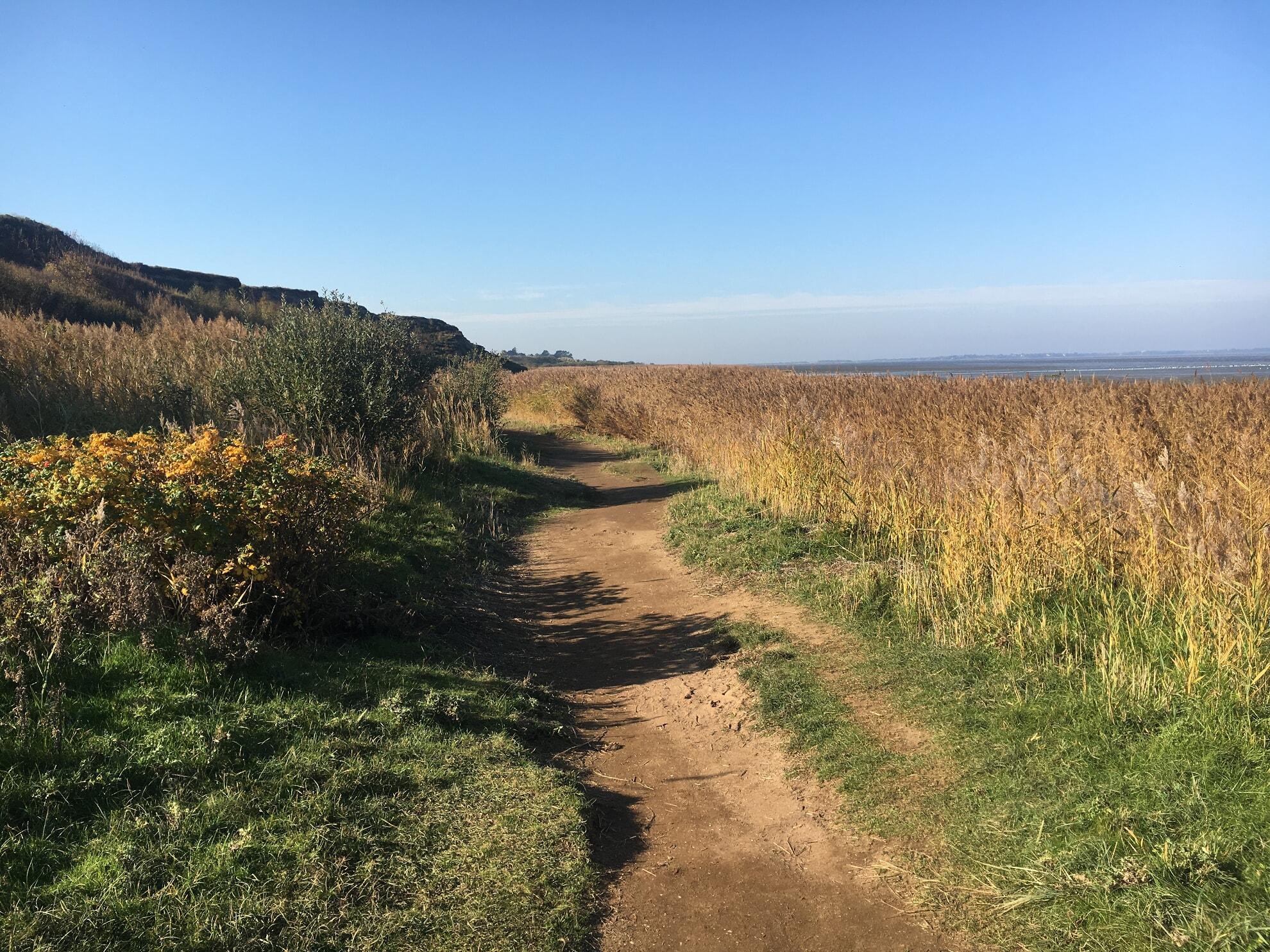 Wanderweg am Watt am Morsum Kliff