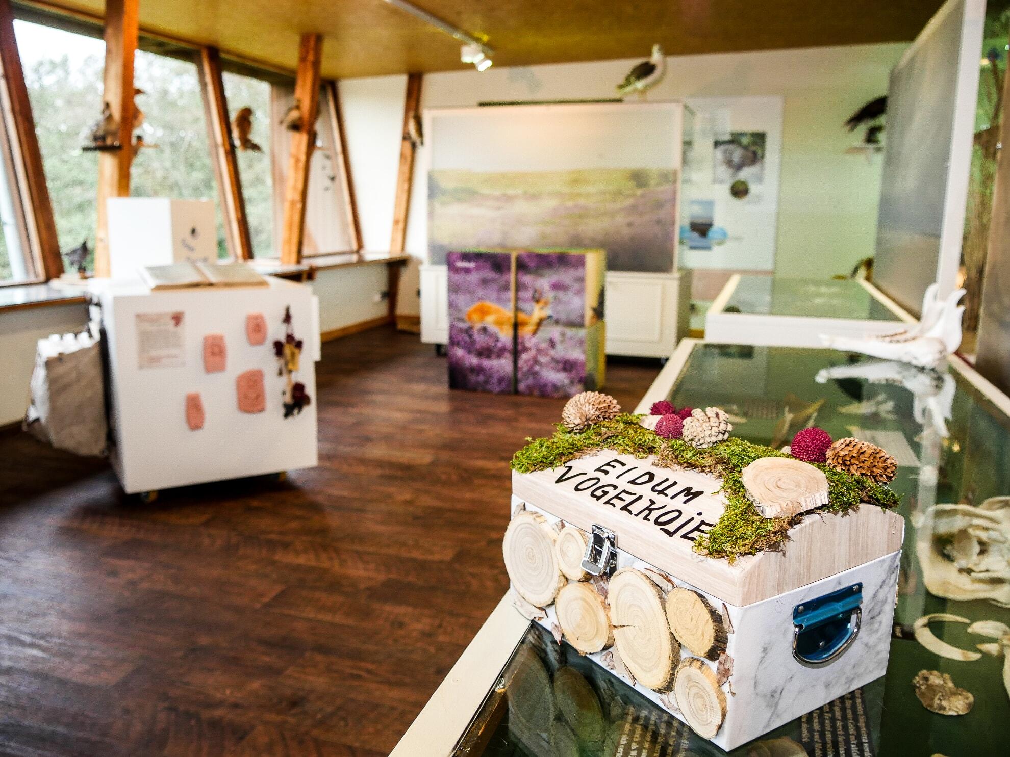 Ausstellung in der Eidum Vogelkoje