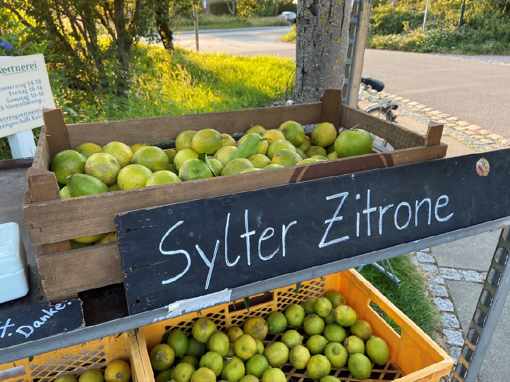Sylter Zitrone von der Sylter Meeresgärtnerei