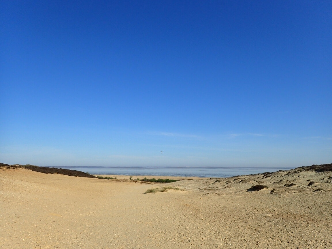 """Der Weg zum Kliff führt durch """"Klein Afrika"""", eine offene Dünenlandschaft."""