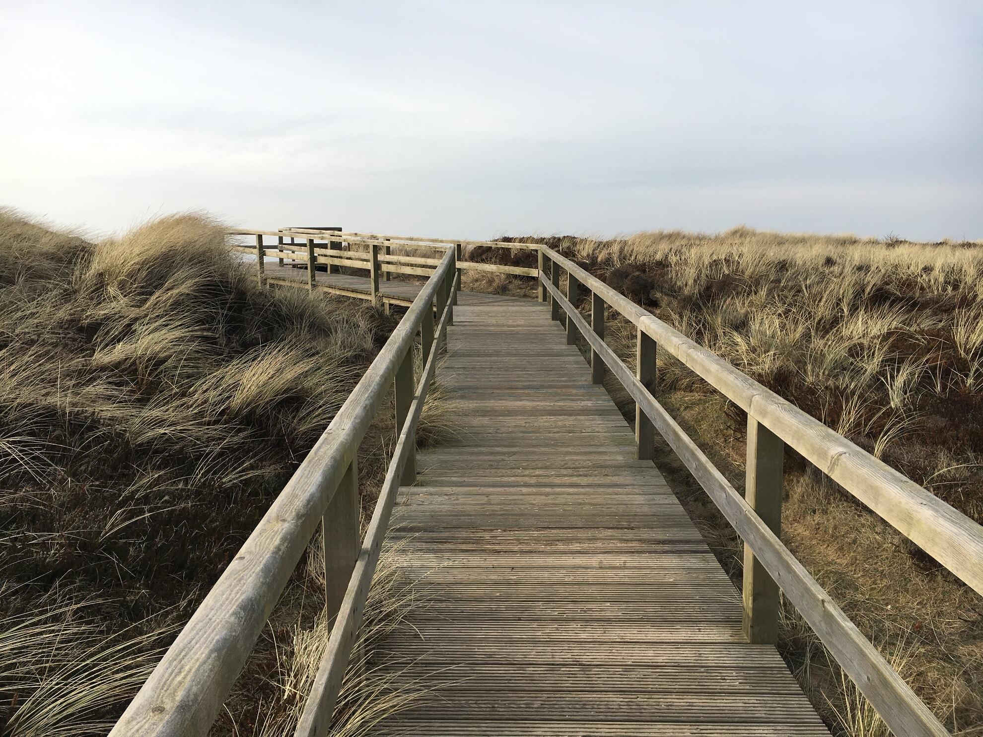 Holzweg mit Ausblick