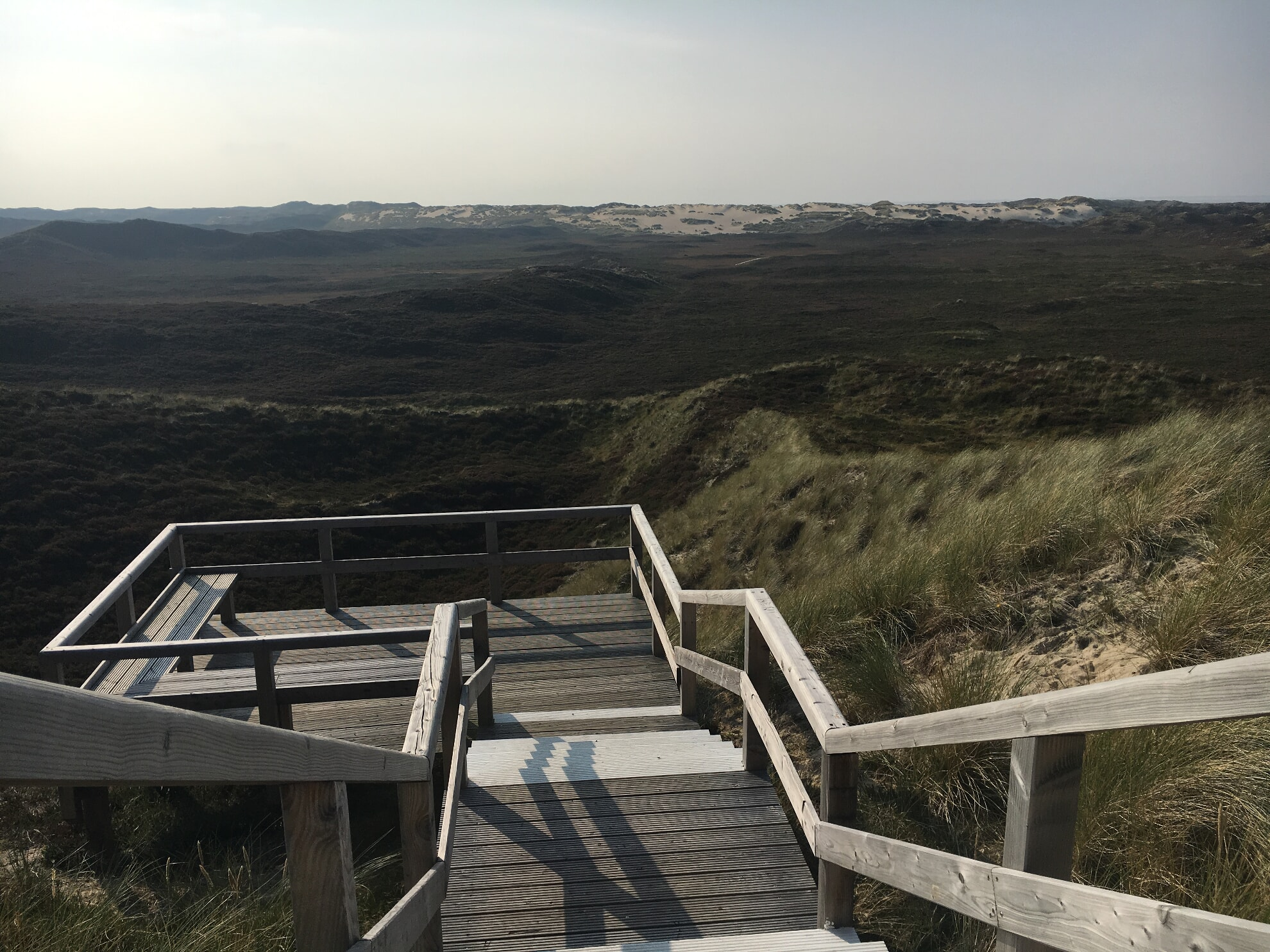 Aussichtsplattform auf die Wanderdüne
