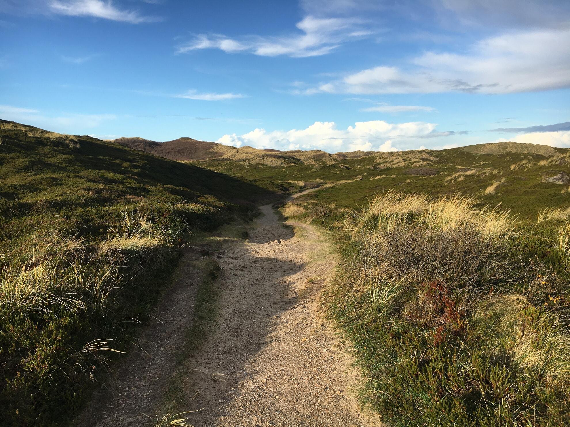 Wanderweg durch die Rantumer Dünen