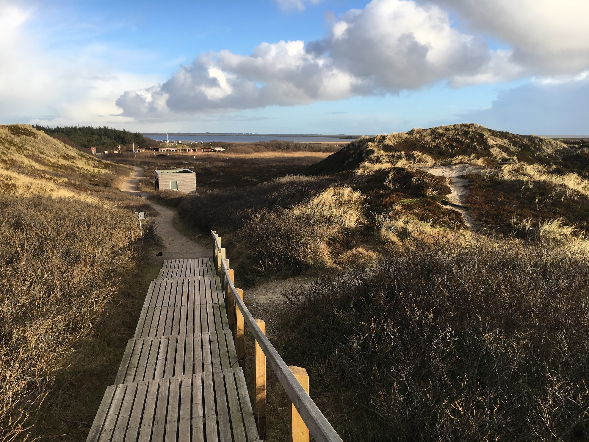 Holzweg zum Rantumer Strand