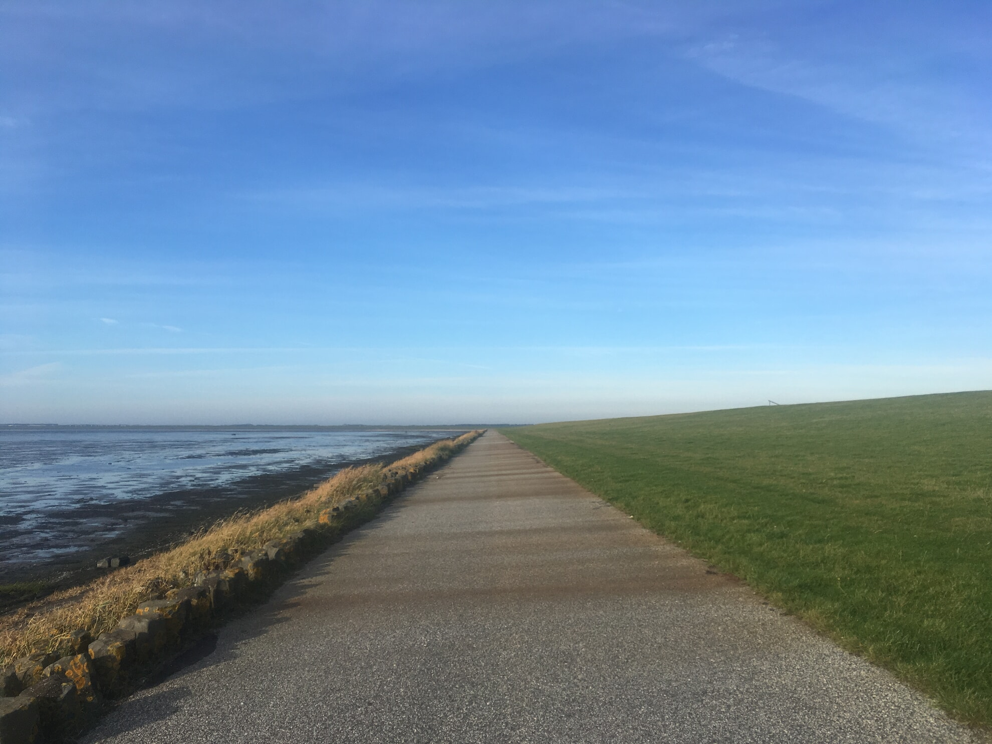 ebener gerader Weg am Wattenmeer