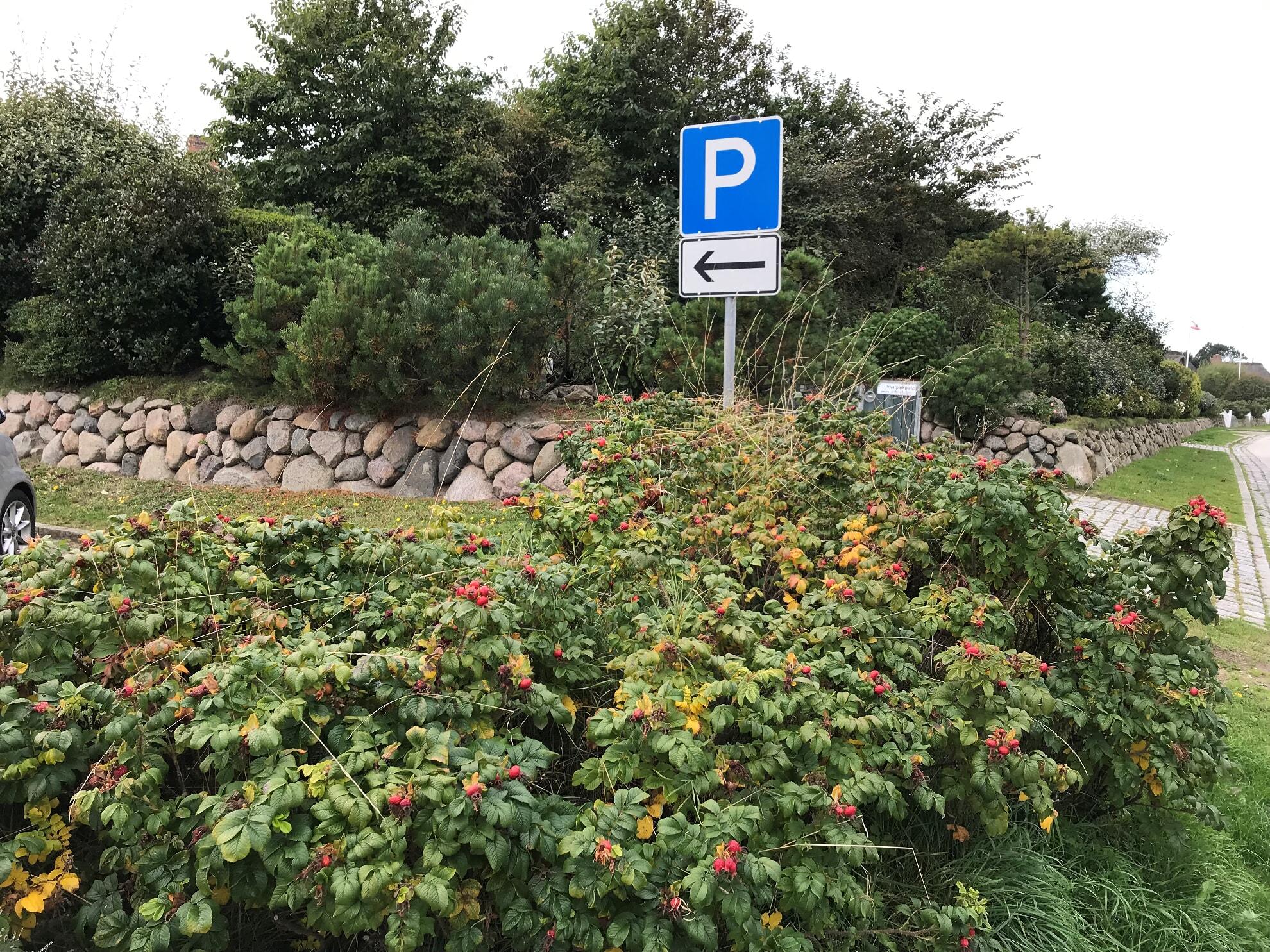 """Der Parkplatz """"Zur Uwe Düne"""" in Kampen"""