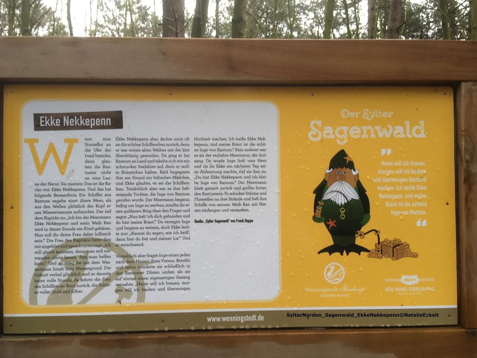Expedition Uthlande-SylterNorden_Sagenwald_EkkeNekkepenn©NatalieEckelt