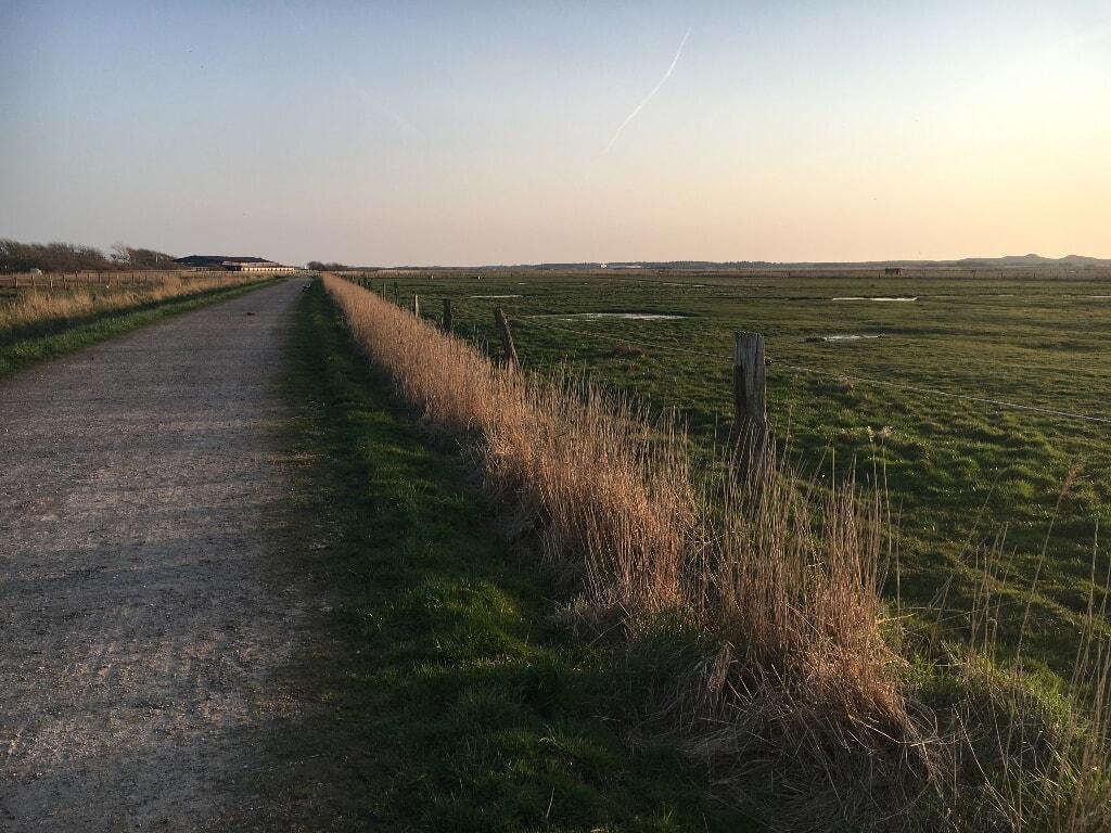 Weg in den Tinnumer Wiesen in Richtung des Reiterhofs Wiesengrund