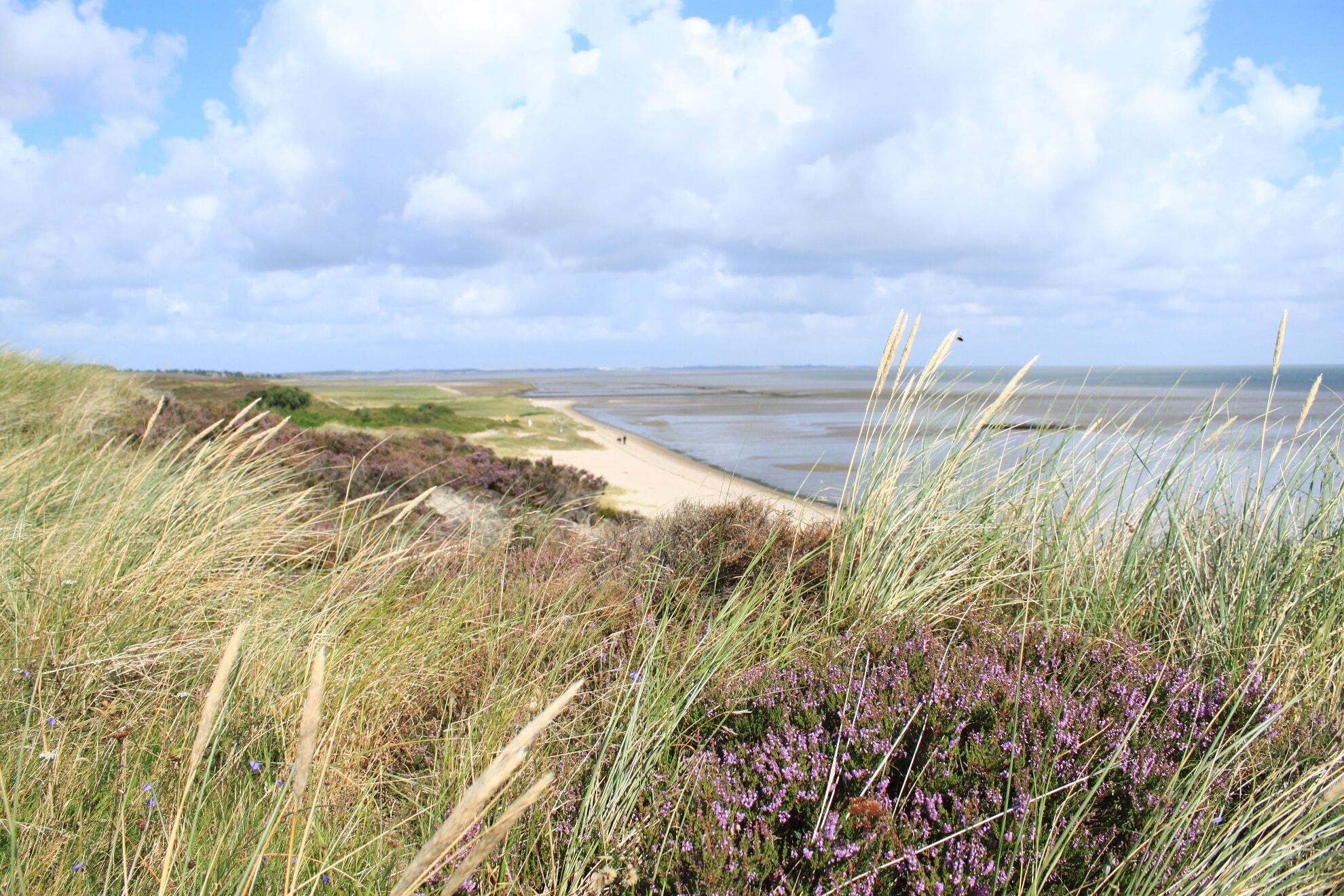 Strand an der Braderuper Heide